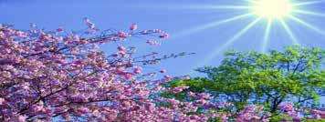 pinksteren2